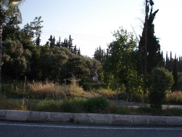 Property For Sale In Soke Turkey